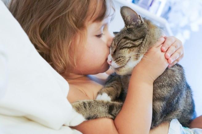 Alergia a pêlos e caspa de animais